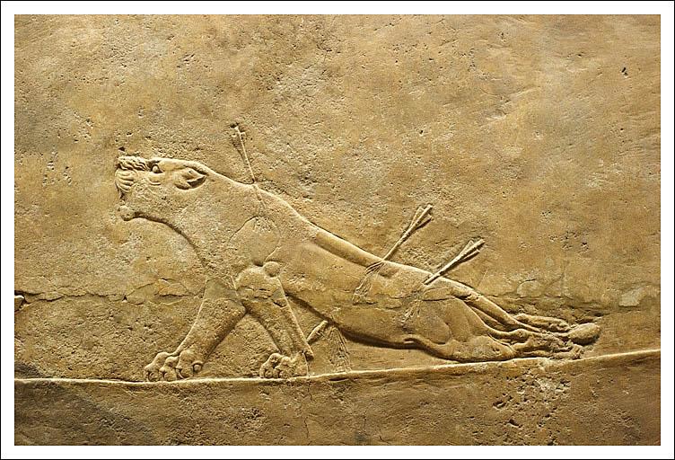 Leona, Asurbanipal